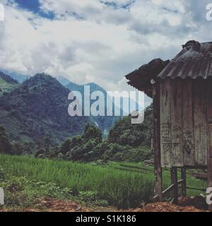 Rice farmer's hut amongst the paddy fields in the Vietnamese mountains near Sapa - Stock Photo