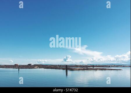 Logs collected together on the coast of Vancouver. - Stock Photo