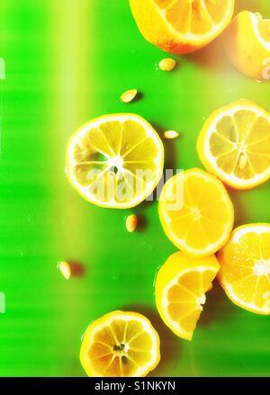 Lemon slices on green - Stock Photo