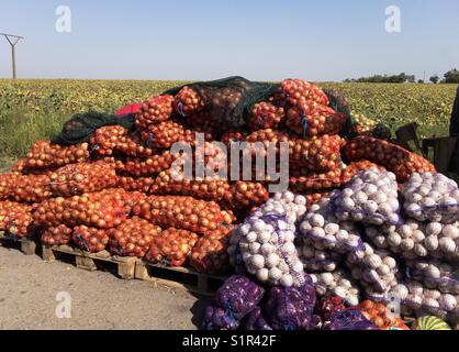Local market of vegetables - Stock Photo