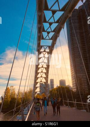 Humber Bay Arch Bridge, Toronto, Canada.