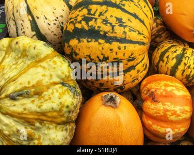 Pumpkins for sale at Portobello Road market in London, England - Stock Photo