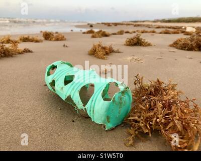 Turtle bites in plastic bottle on beach - Stock Photo