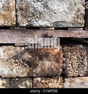 Cinder blocks and wood - Stock Photo