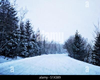 Picture taken while we were driving from ski resort in Slovakia. I add some of my editing skills and that's how - Stock Photo