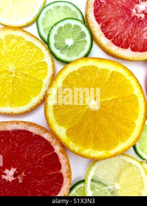 Citrus fruit slices on a white background - Stock Photo