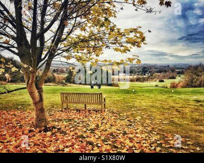 View across The Hampshire Golf club near Andover, Hampshire, England, UK - Stock Photo