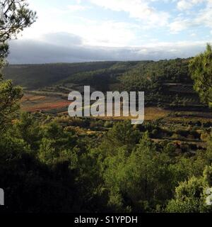Autumn view of vineyards in the Corbières wine region of southern France - Stock Photo
