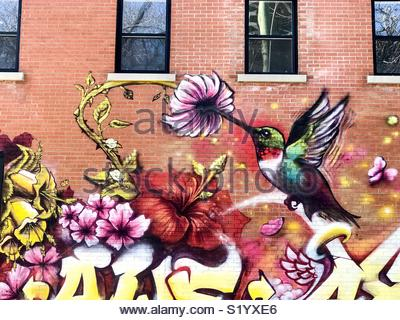 Hummingbird mural graffiti street art Montreal Quebec Canada - Stock Photo