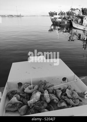Fried fish snack front of the harbour - Stock Photo