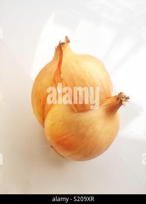 Natural light onion peeling - Stock Photo