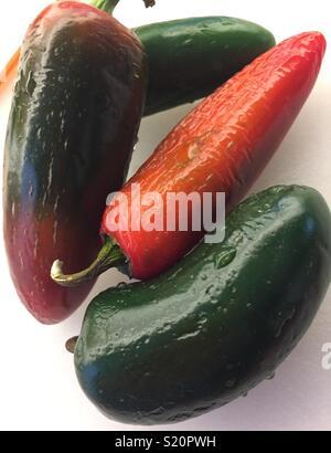 Still life of ripening jalapeño peppers. - Stock Photo