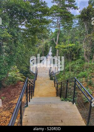 Suspended walkway in The Habitat on Penang Hill. - Stock Photo