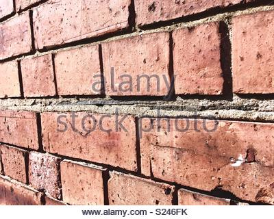 Old fashioned damp proof in a brick wall made from slate - Stock Photo
