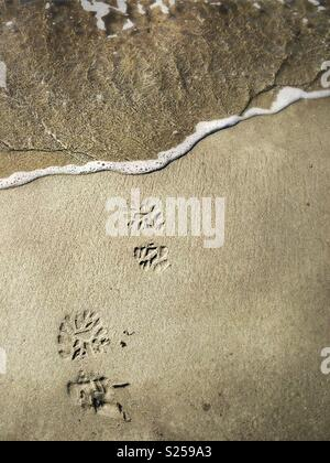 Boot prints on the beach, about to get washed away - Stock Photo
