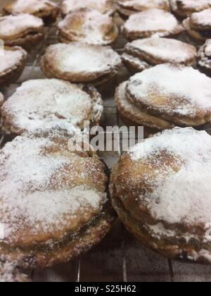 Fresh Mince pies - Stock Photo