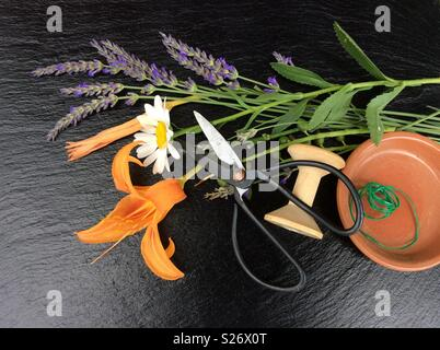 Elevated view on floristic background. Blooming lavender, single blossom of a marguerite, day lily, vintage scissors and green florist wire from a wooden spool - Stock Photo