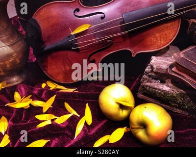 Still life with violin - Stock Photo