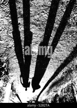 Human shadows - Stock Photo