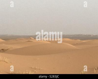 Sea of sand dunes Erg Chebbi Sahara Desert - Stock Photo