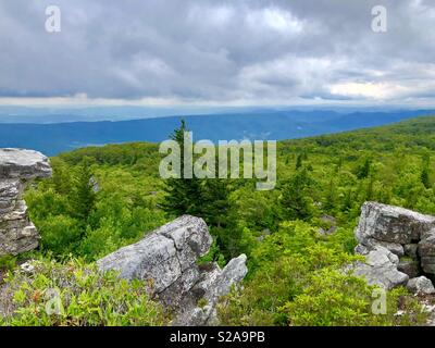 Dolly Sods, West Virginia a great place to go with the family and hike. - Stock Photo