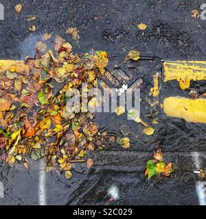 Autumn roadside drain by kerb blocked with fallen autumn leaves October 2018 - Stock Photo