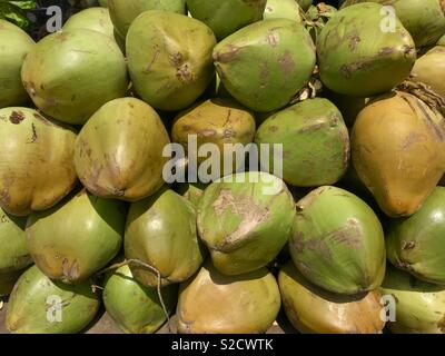 Pile Green coconuts for sale in the market - Stock Photo