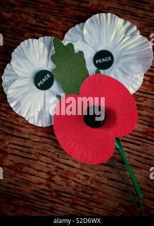 Remembrance Day white peace poppies and Red British Legion poppy. - Stock Photo