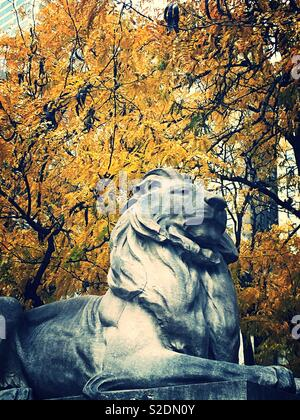 Fortitude the library lion in front of bright yellow autumn foliage, Fifth Avenue, NYC, USA - Stock Photo