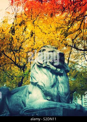 Close-up of fortitude one of the library Lions in front of the New York Public Library on fifth Avenue,  on a fall day,NYC, USA - Stock Photo