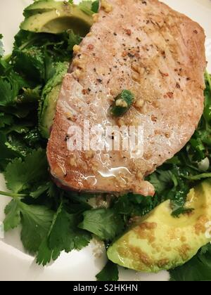 Close up of a gourmet entrée of seared fresh tuna on a bed of avocado and cilantro. - Stock Photo