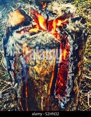Swedish fire log burning, Sweden, Scandinavia. The logs are vertically cut and set on fire. The fire is self feeding and the log burns from inside out. The fire can last for up to 5 hours - Stock Photo