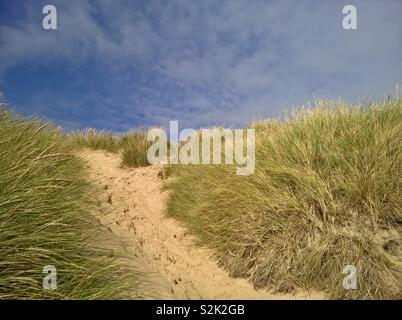 Footprints in the sand on a path through grass covered sand dunes - Stock Photo