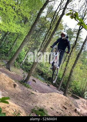 Downhill Mountain Biker flying over a jump - Stock Photo