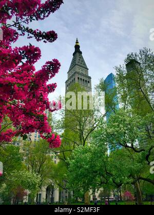The 1 Madison Ave. tower as seen from Madison Square, Park, NYC, USA - Stock Photo