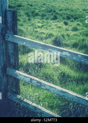 Old wooden fence next to grassy field. - Stock Photo
