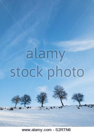 Idyllic rural winter landscape with snow covered field, trees and blue sky with clouds - Stock Photo