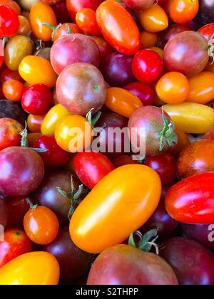 Colorful cherry tomatoes