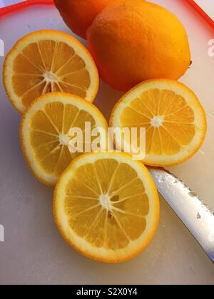 Slices of a fresh Meyer lemon on a cutting board with a serrated knife, USA - Stock Photo