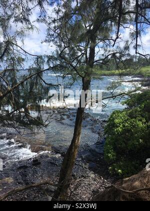 On the hike to Red Sand Beach, Hana, Maui - Stock Photo