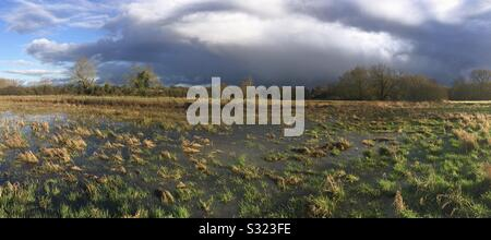Flooded meadow at Tednambury in Hertfordshire. River Stort valley - Stock Photo