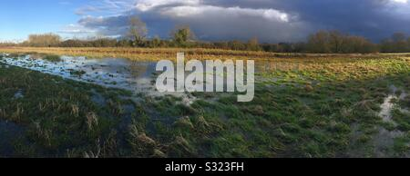 Panoramic of flooded fields in the Stort Valley at Tednambury near Bishops Stortford Hertfordshire - Stock Photo