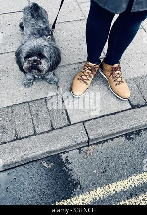 Dog and owner With matching feet