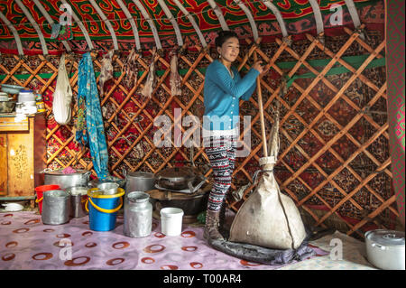 Bayan Olgii, Mongolia, 29th September 2015: Mongoilian kazakh nomad  woman making cheese  in her home yurt - Stock Photo