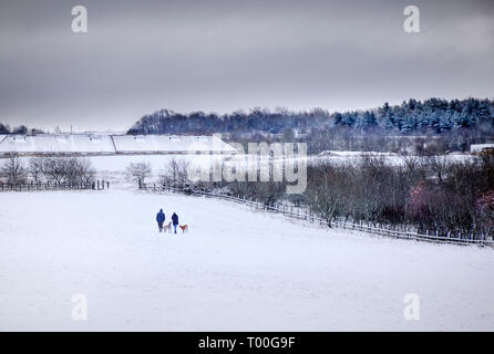 A couple, man and woman, walking two dogs through a winter landacape on the edge of an urban development - Stock Photo