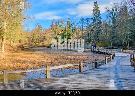 A pair of walkers enjoy the Autumnal frosty views along a wooden walkway - Stock Photo