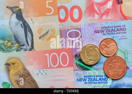 New Zealand paper currency & coins, Auckland, New Zealand - Stock Photo
