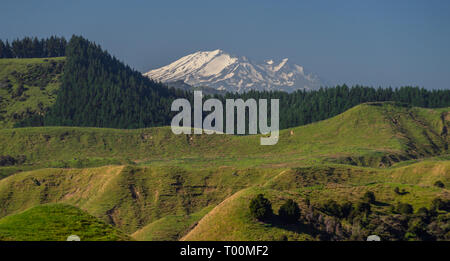 Summer view of the active volcano Mount Ruapehu, viewed from Wanganui, in the North Island of New Zealand. - Stock Photo