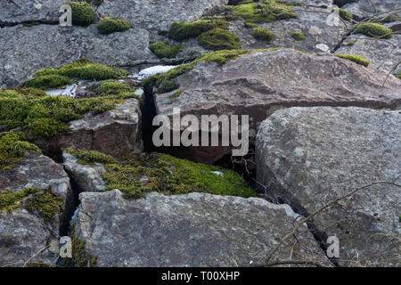 large stones covered with MOSS in cloudy weather - Stock Photo
