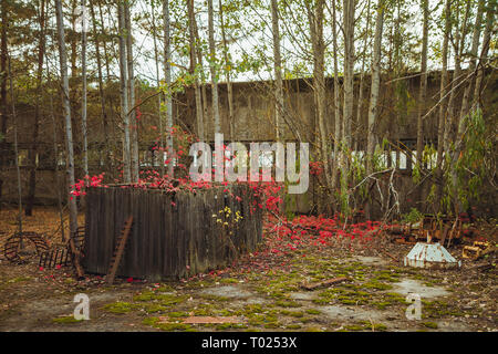 Chornobyl exclusion zone. Radioactive zone in Pripyat city - abandoned ghost town. Chernobyl history of catastrophe. Lost place in Ukraine, SSSR - Stock Photo